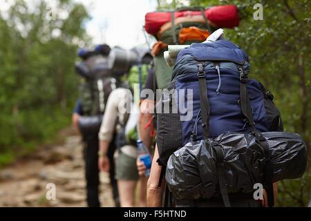 Sweden, Jamtland, People hiking with backpacks - Stock Photo