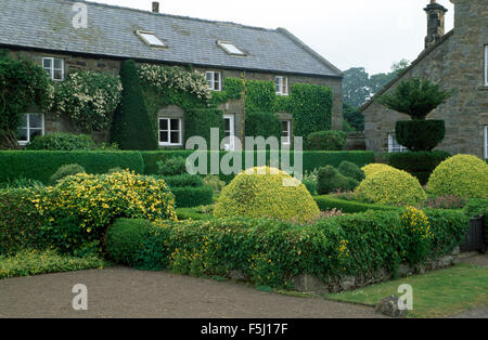 Clipped shrubs and hedges in garden of country house with white roses on the walls - Stock Photo