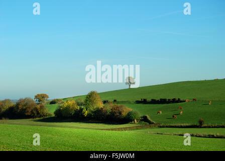 countryside in Zuid Limburg, Netherlands Stock Photo