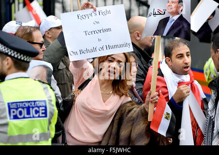 London, UK. 5th November, 2015. Demonstrators for and against President al-Sisi of Egypt protest in Whitehall awaiting - Stock Photo