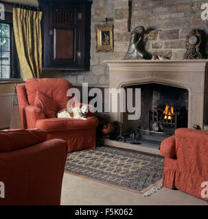 dog lying on a red armchair beside fireplace in a nineties living room with an exposed