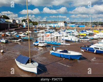 Boats in Paignton Harbour Devon England UK Europe - Stock Photo