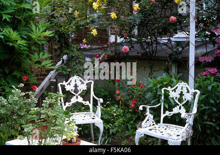 White wrought iron chairs on patio with pink and yellow roses in a in town garden - Stock Photo