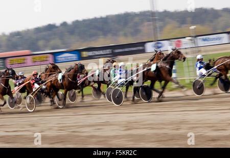 Sweden, Vastra Gotaland, Gothenburg, View of horse race - Stock Photo