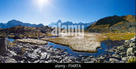 Panoramic view on a field of cottongrass surrounded of a small lake in the mountains of Grand Saint-Bernard in Valais - Stock Photo