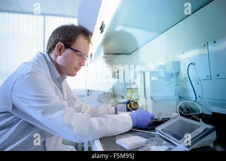 Scientist weighing chemicals in fume cupboard in testing laboratory - Stock Photo