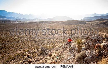 Mountain biker, Las Vegas, Nevada, USA - Stock Photo