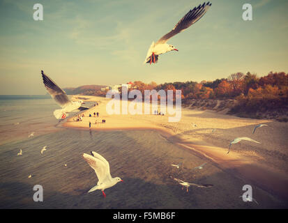 Vintage retro stylized birds above a beach, Baltic Sea, Poland. - Stock Photo