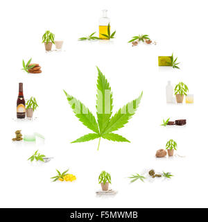 the background of the hemp and its uses We also explore what brought about its eventual downturn before  the first  recorded use of hemp in america's colonial years comes from.