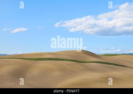 Tuscany, undulating plowed field, rural landscape in Crete Senesi, Italy, Europe. Subtle shadows, blue cloudy sky - Stock Photo