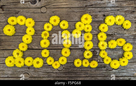 Happy new year 2016 made of flowers - Stock Photo