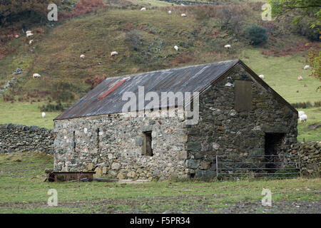 Old Stone Barn Tucked Away In The Corner Of Field Sheep Grazing On Steep