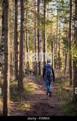 Sweden, Vastergotland, Lerum, Rear view of hiker in forest - Stock Photo