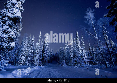 Finland, Lapland, Kittila, Levi, Country road in winter at night - Stock Photo