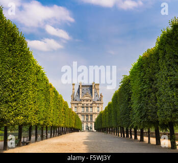 Tuilleries Garden tree-lined vista leading to Louvre Museum. Summer view of the Terrasse du Bord de l'Eau in Paris, - Stock Photo