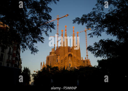 La Sagrada Familia is seen through the trees at sunset in Barcelona. - Stock Photo