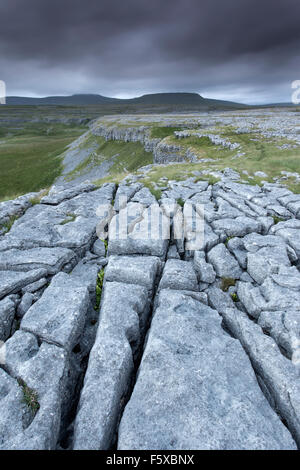 View towards Ingleborough from Limestone Pavement at Moughton Scar, Crummackdale, Yorkshire Dales, North Yorkshire, - Stock Photo