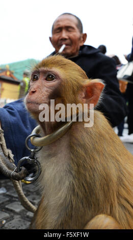 A Chinese man with his monkey in Shanghai,China. - Stock Photo