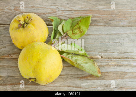 Two quince fruits on wooden background - Stock Photo