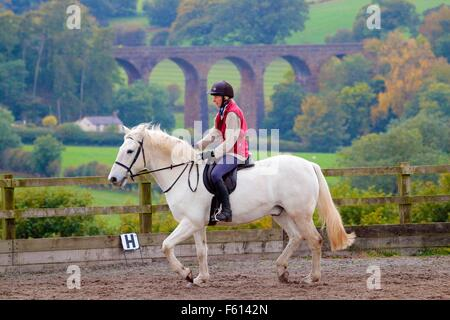 Woman rider practicing dressage in paddock. In the background Dry Beck Viaduct, Armathwaite, Eden Valley, Cumbria, - Stock Photo