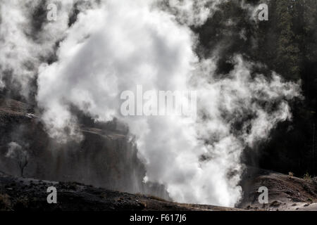 Black Growler steam vent - Stock Photo