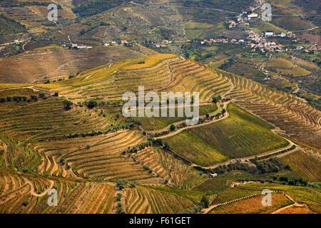 Vineyards in Pinhao valley in the heart of Alto Douro Wine Region (UNESCO World Heritage, Site), Porto e Norte, - Stock Photo