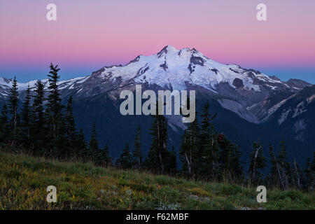 WA10915-00...WASHINGTON - Sunrise on Glacier Peak from Liberty Cap in the Glacier Peak Wilderness Area. - Stock Photo