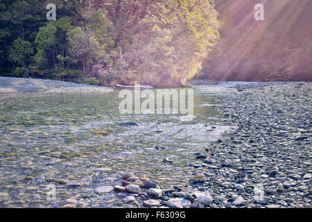 sun rays filtering though trees onto a stream of fresh water coming from the mountains in New Zealand - Stock Photo