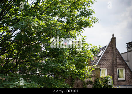 1 June 2014, Amsterdam, Netherlands  The clock of the Westertoren just visible in the green of the inside gardens - Stock Photo