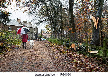 Middleton-in-Teesdale, Co Durham, UK 11th November 2015 The heavy rainfall continues in the North Pennine hills - Stock Photo