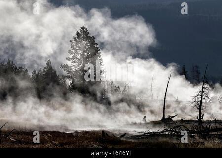 Yellowstone - Morning mists - Stock Photo