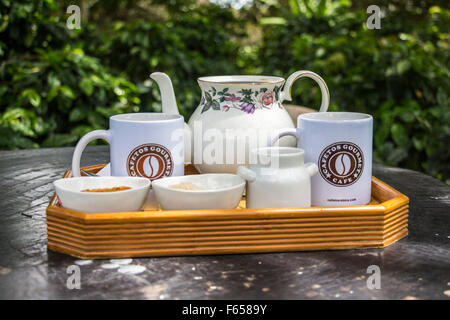 Coffee Time in Panama - Stock Photo