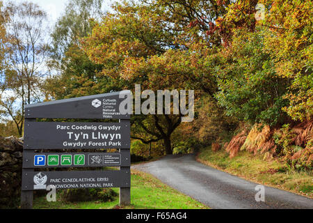 Ty'n Llwyn carpark sign by country lane in Gwydyr Forest Park in Snowdonia National Park in autumn. Betws-y-Coed - Stock Photo