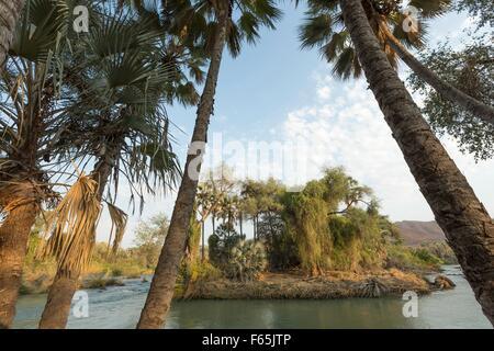 A small island in the Kuene River, the border between Namibia and Angola, near the Epupa Falls, Kunene Province, - Stock Photo