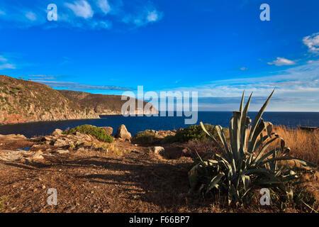 Capraia Island - Stock Photo