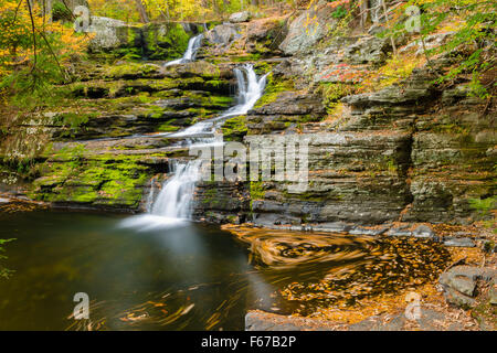 Fall leaves swirl in the pool below Factory Falls waterfall in George W. Childs Recreation Site in this long exposure - Stock Photo