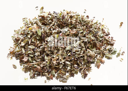 Green dry Melissa officinalis or lemon balm or balm mint, herbal tea leaves, portion lying flat on mirror with white - Stock Photo