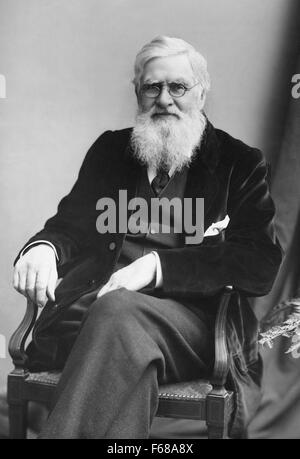 Alfred Russel Wallace (1823 - 1913), a British naturalist, biologist, geographer, and explorer (shown c1895) is - Stock Photo
