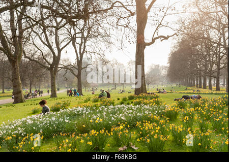 St James's Park in spring, London, England, UK - Stock Photo