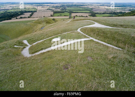 Looking at the head of the White Horse carved into a hillside near Abingdon in Oxfordshire known as the Vale of - Stock Photo