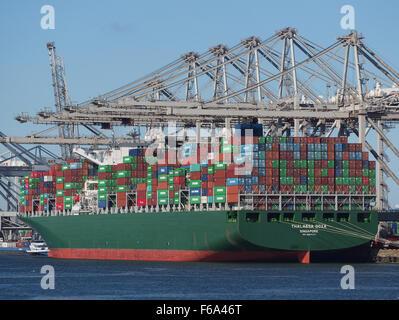 Thalassa Doxa (ship, 2014), IMO 9667174, Port of Rotterdam - Stock Photo