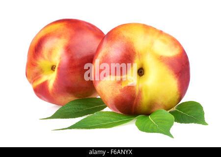 Nectarine Peach Fruits - Stock Photo