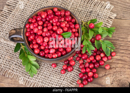 Cup with lingonberry top view - Stock Photo
