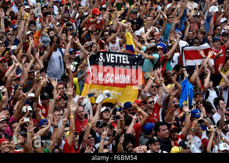 Brazil. 15th November, 2015. Motorsports: FIA Formula One World Championship 2015, Grand Prix of Brazil, fans Credit: - Stock Photo