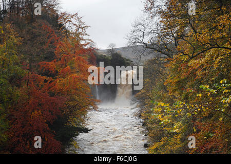 High Force waterfall on the River Tees, Teesdale. County Durham. England. UK. - Stock Photo