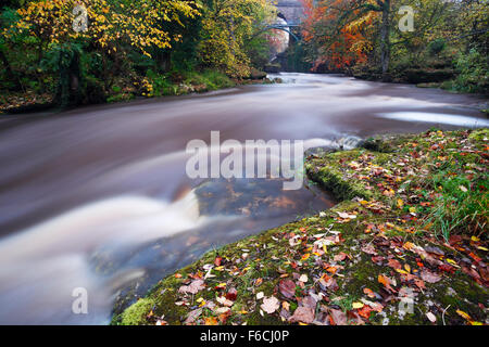 River Eden at Stenkrith Bridge, Kirkby Stephen. Eden Valley. Cumbria. UK. - Stock Photo