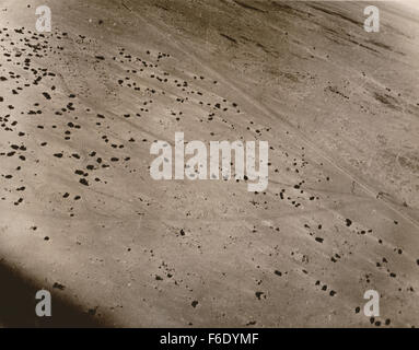 1939 Africa Corps abandoned vehicles left in the desert after they ran out of fuel - Stock Photo