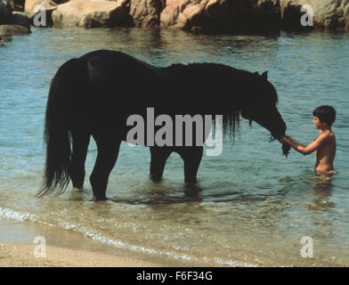 RELEASE DATE: October 17, 1979. MOVIE TITLE: The Black Stallion. STUDIO: Omni Zoetrope. PLOT: While traveling with - Stock Photo