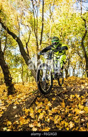 A downhill bike jump. MTB jump. - Stock Photo