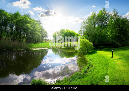 Green park near calm river under sunlight - Stock Photo